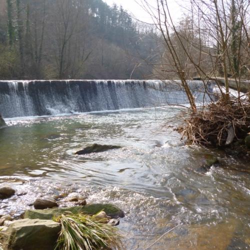 Suministro de equipos ALNUS-BSP para las centrales de Sotilla-Saluni y Portolín (Cantabria)
