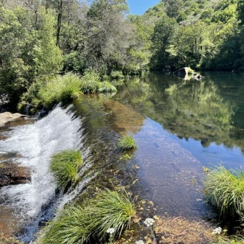 NATURGY instala una barrera sónica para peces ALNUS-BSP en la Central de Dorna en el río Lérez (Pontevedra, España)